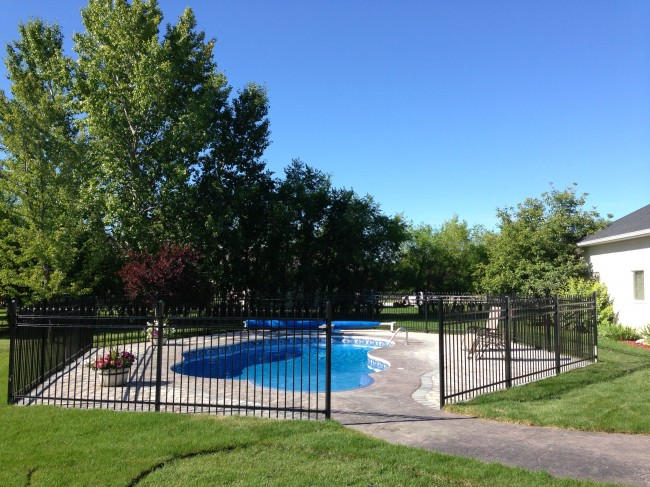 Landscaping choices around pools the lawn salon