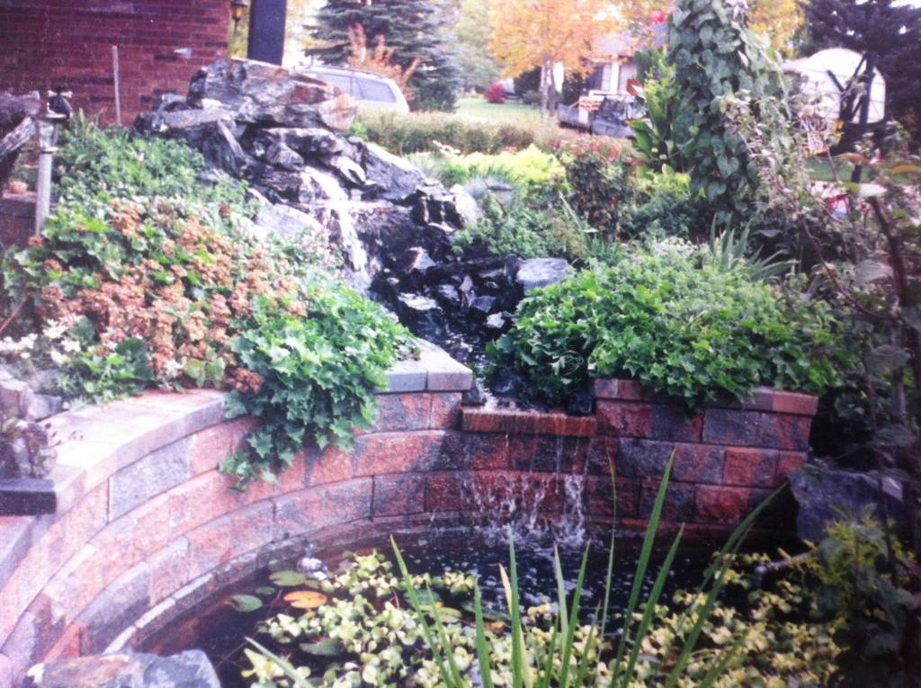 Backyard Landscaping with Water Features