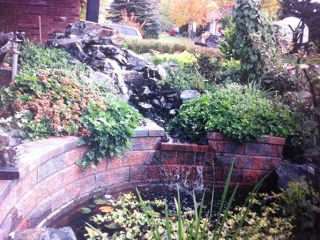 Front yard waterfall, stream and pond