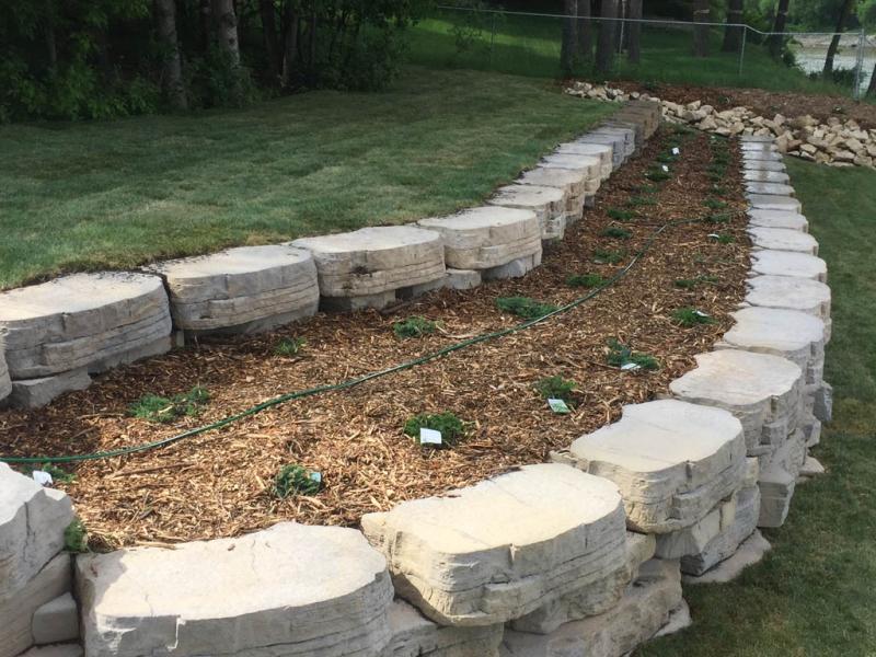 Sod, plants, mulch, etc for riverbank re-build