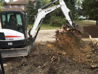 Large stump removal with Bobcat excavator