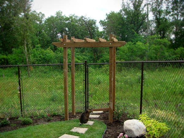 Arbor leading out of back gate