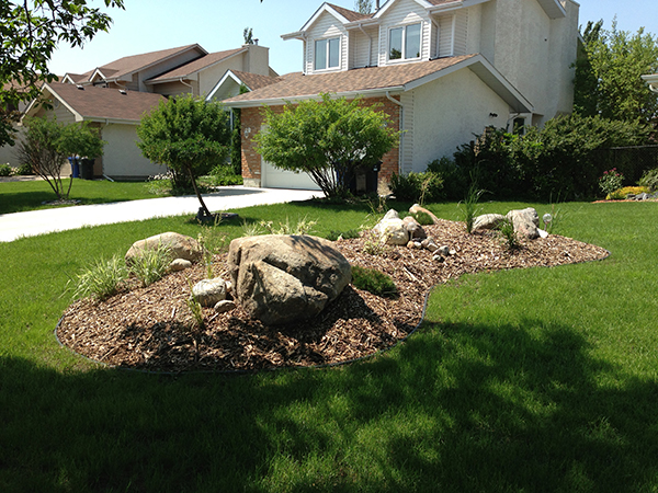 Front yard berm with round boulders, wood mulch and plants (Low maintenance gardens).jpg