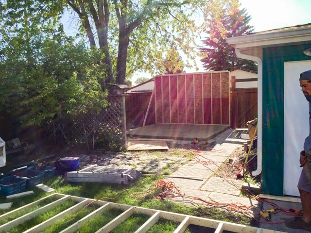 Shed With Canexel Siding And Roll Up Door The Lawn Salon