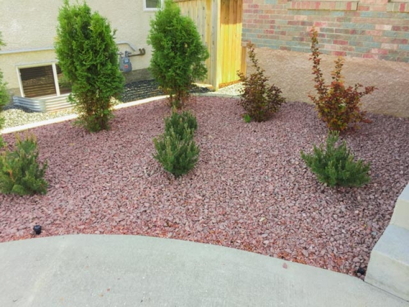 Shrubs with Red Granite decorative stone