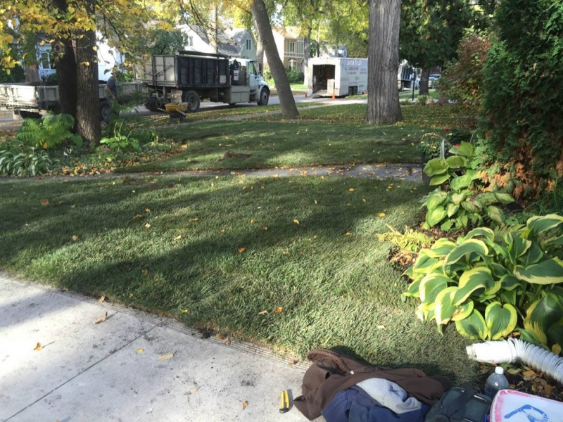 Mineral sod on front yard