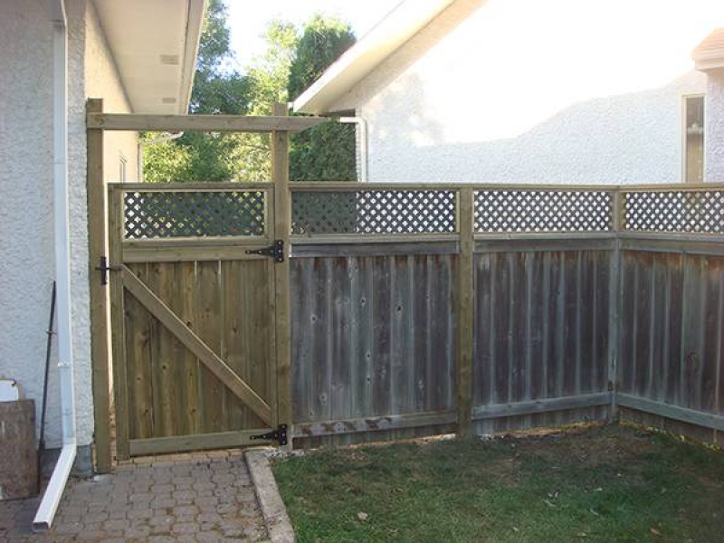 New gate and lattice top for existing fence. (fences)