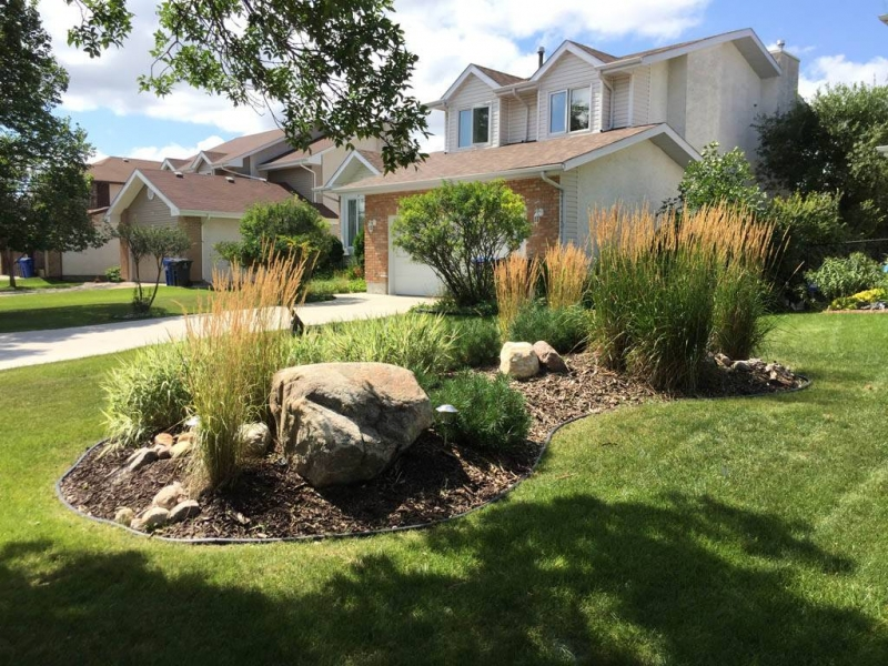 Front yard berm with round boulders wood mulch and plants